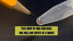 7,00,000 GB on a Gram of water drop : DNA Data Storage for you