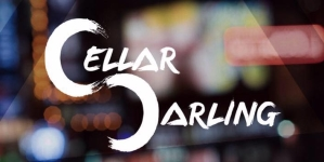 Cellar Darling : The band every Metal fan is wondering about